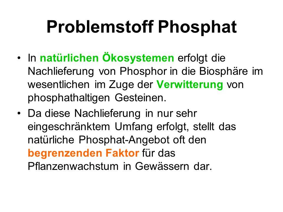 Problemstoff Phosphat