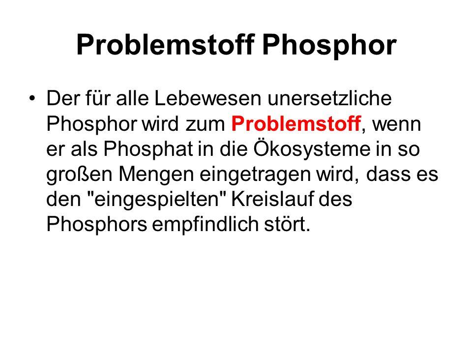 Problemstoff Phosphor
