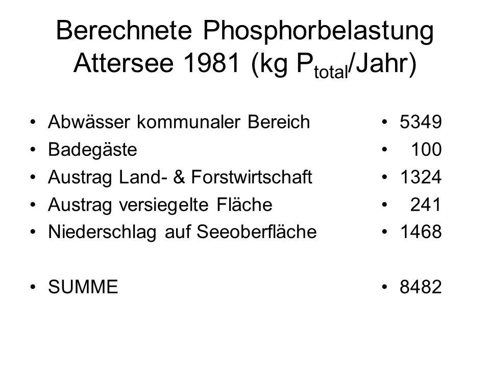 Berechnete Phosphorbelastung Attersee 1981 (kg Ptotal/Jahr)