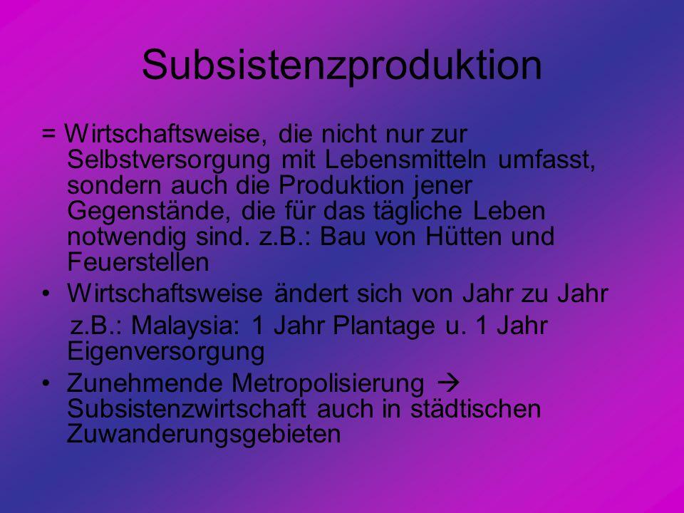 Subsistenzproduktion