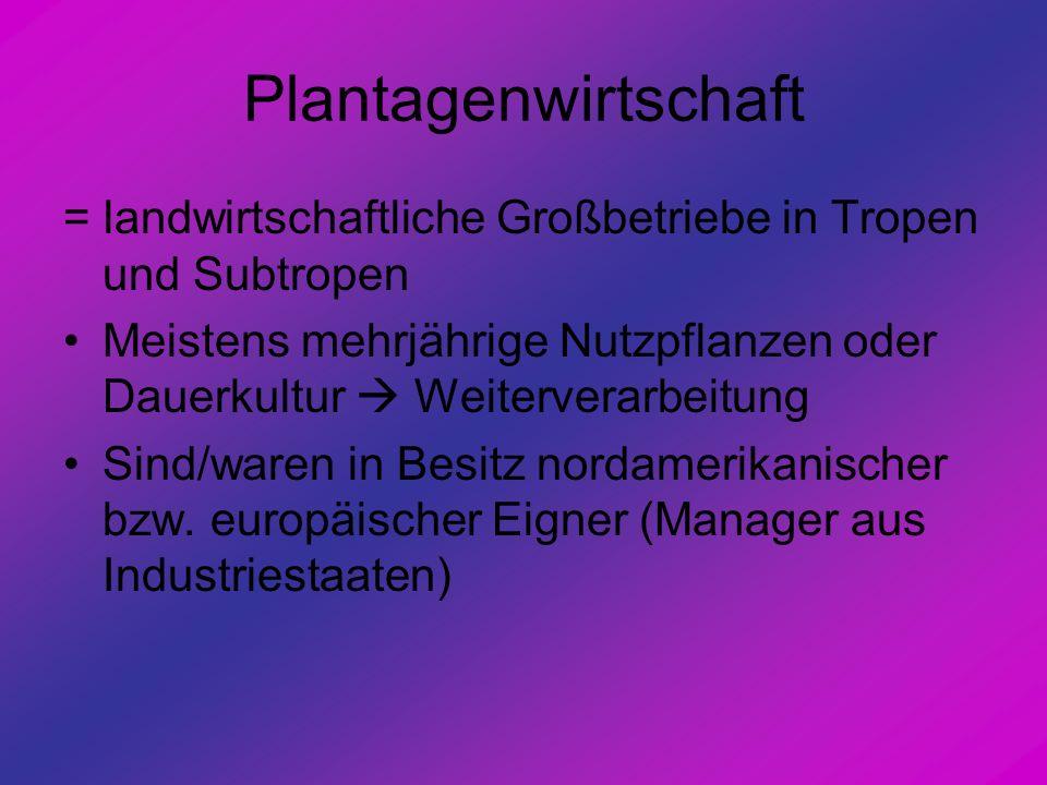 Plantagenwirtschaft = landwirtschaftliche Großbetriebe in Tropen und Subtropen.