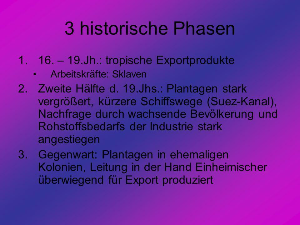 3 historische Phasen 16. – 19.Jh.: tropische Exportprodukte