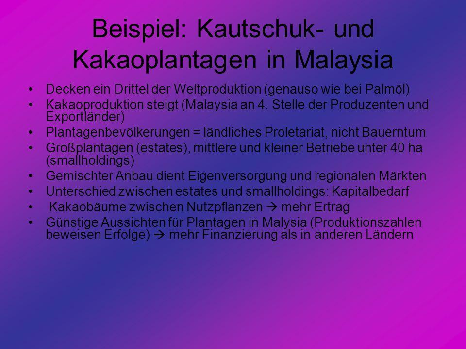 Beispiel: Kautschuk- und Kakaoplantagen in Malaysia
