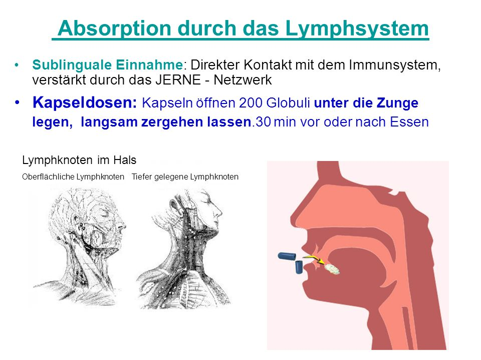 Absorption durch das Lymphsystem