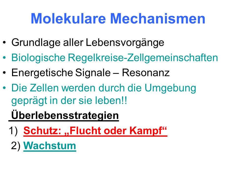 Molekulare Mechanismen