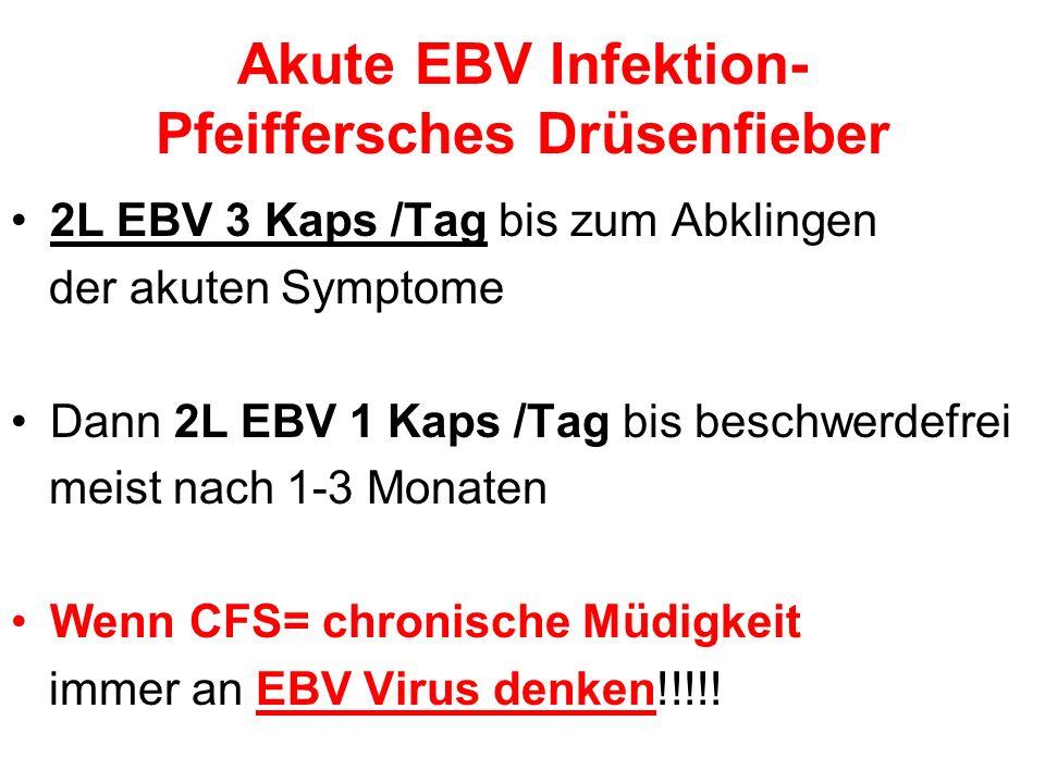 Akute EBV Infektion- Pfeiffersches Drüsenfieber