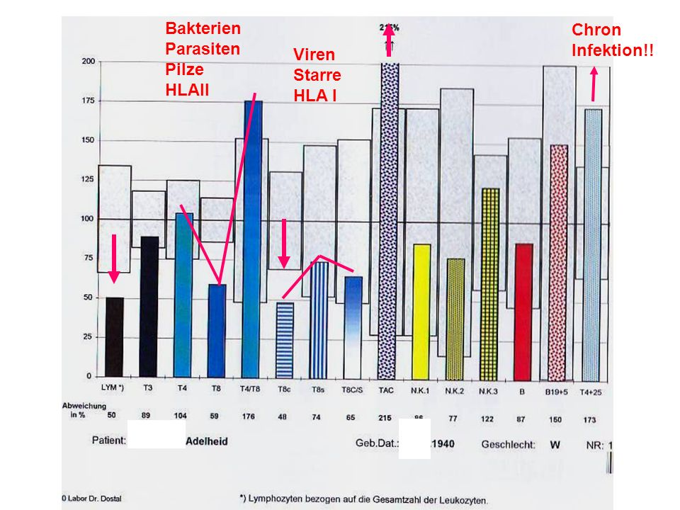 Bakterien Parasiten Pilze HLAII Chron Infektion!! Viren Starre HLA I
