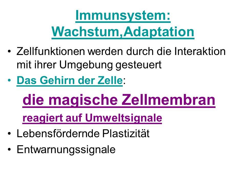 Immunsystem: Wachstum,Adaptation
