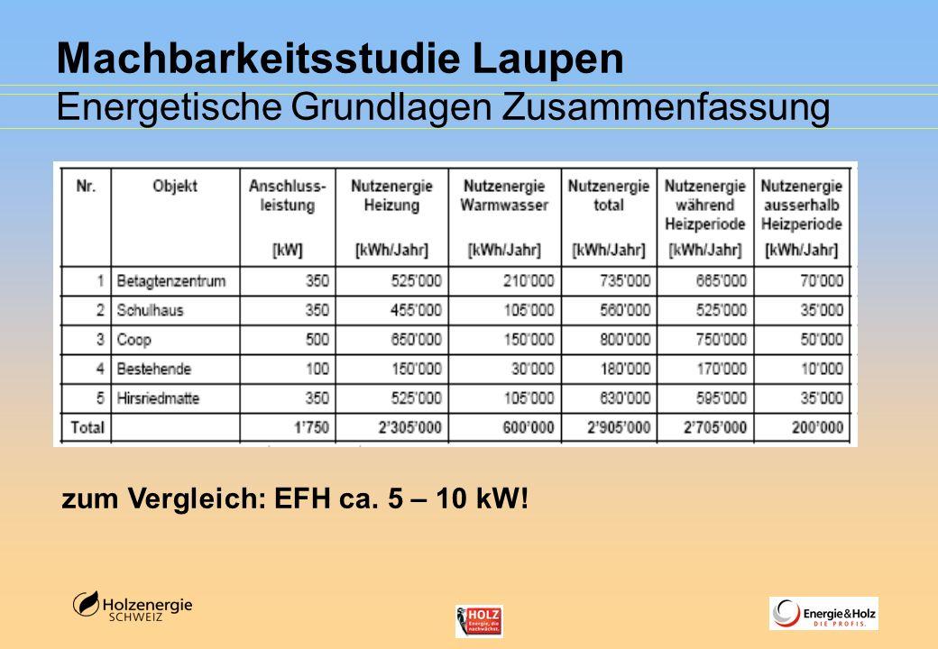 Machbarkeitsstudie Laupen Energetische Grundlagen Zusammenfassung