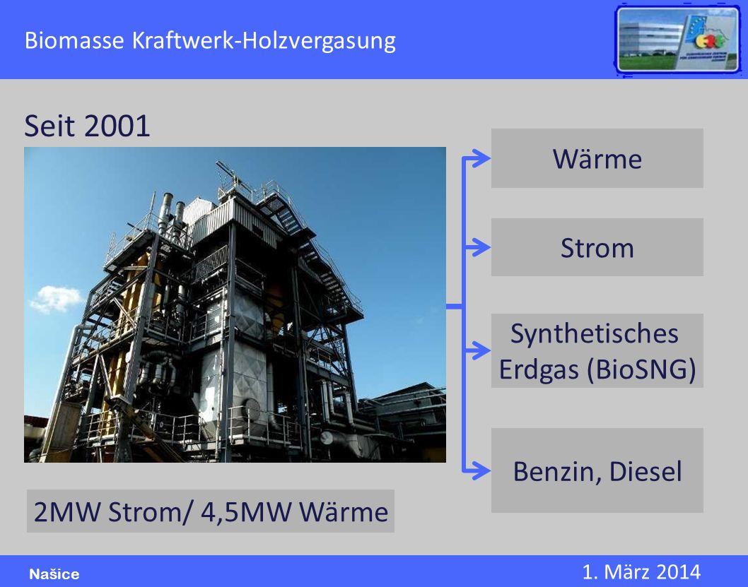 Seit 2001 Wärme Strom Synthetisches Erdgas (BioSNG) Benzin, Diesel