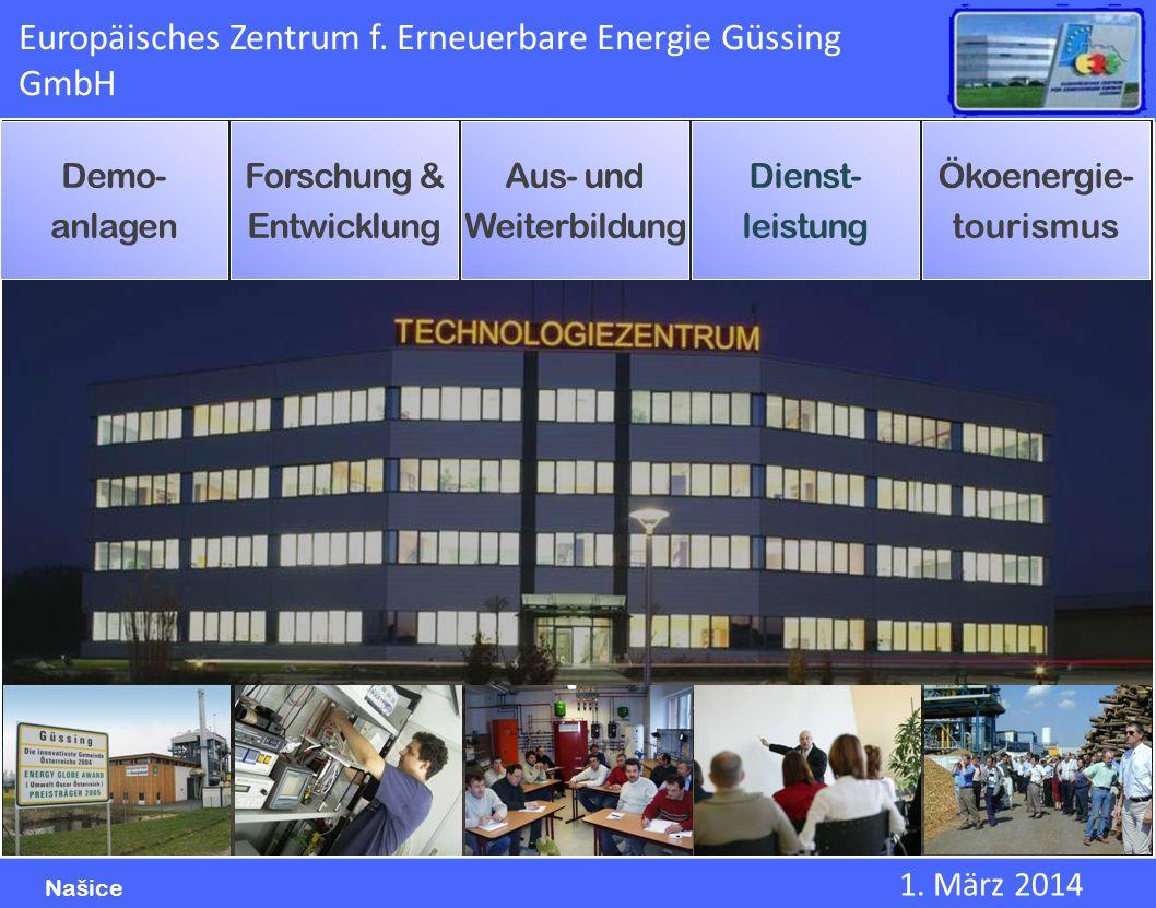 Europäisches Zentrum f. Erneuerbare Energie Güssing GmbH