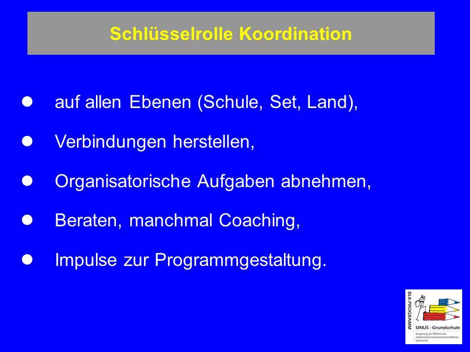 Schlüsselrolle Koordination