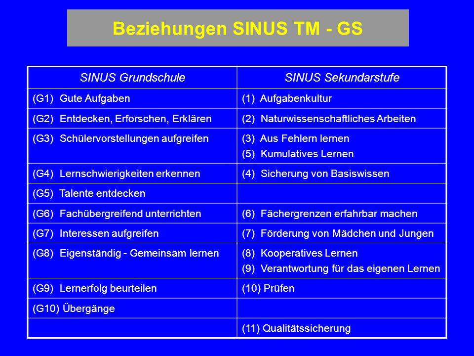 Beziehungen SINUS TM - GS
