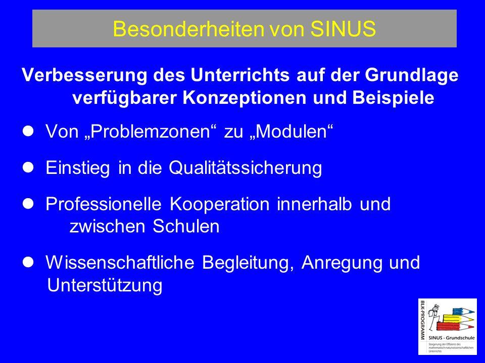 Besonderheiten von SINUS