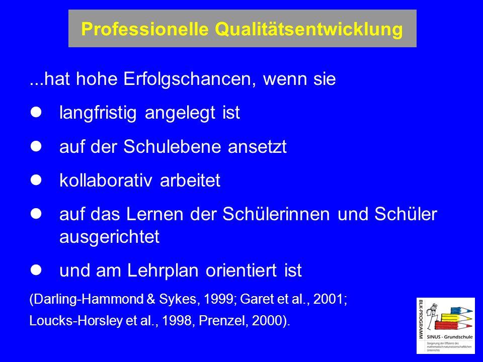 Professionelle Qualitätsentwicklung