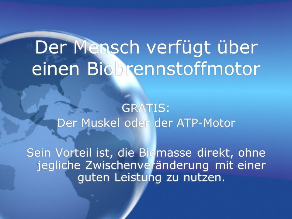 Der Mensch verfügt über einen Biobrennstoffmotor