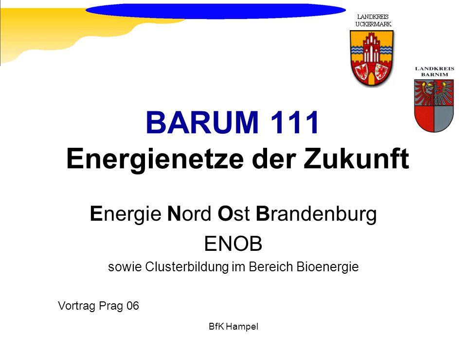 BARUM 111 Energienetze der Zukunft