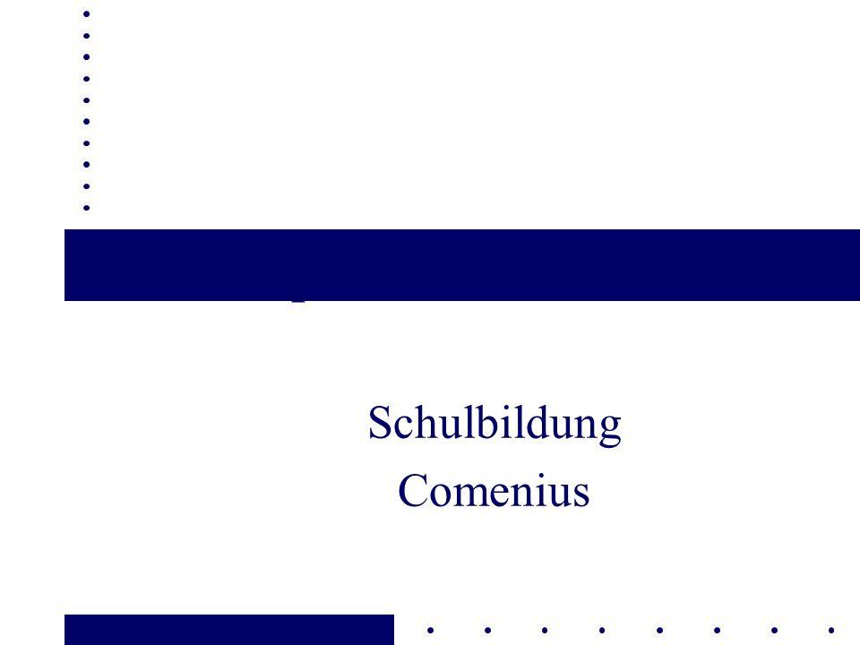Schulbildung Comenius