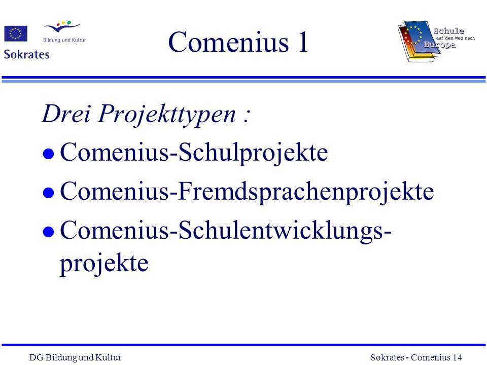 Comenius 1 Drei Projekttypen : Comenius-Schulprojekte