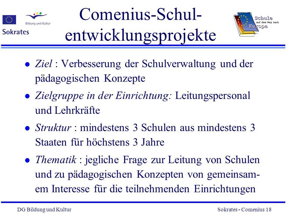 Comenius-Schul-entwicklungsprojekte