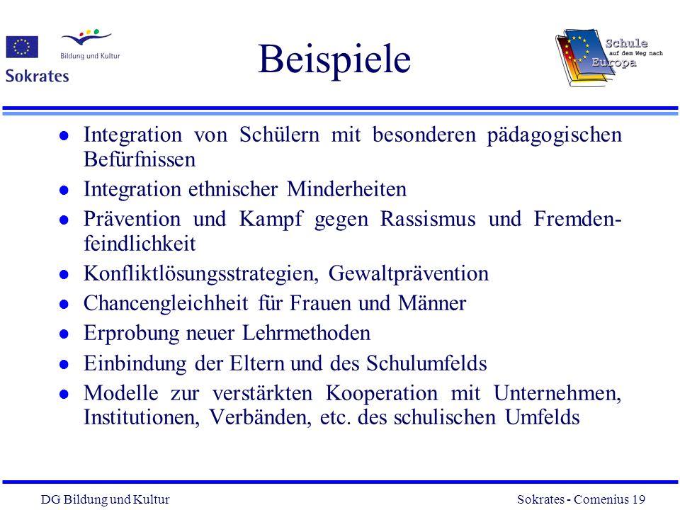 Beispiele Integration von Schülern mit besonderen pädagogischen Befürfnissen. Integration ethnischer Minderheiten.