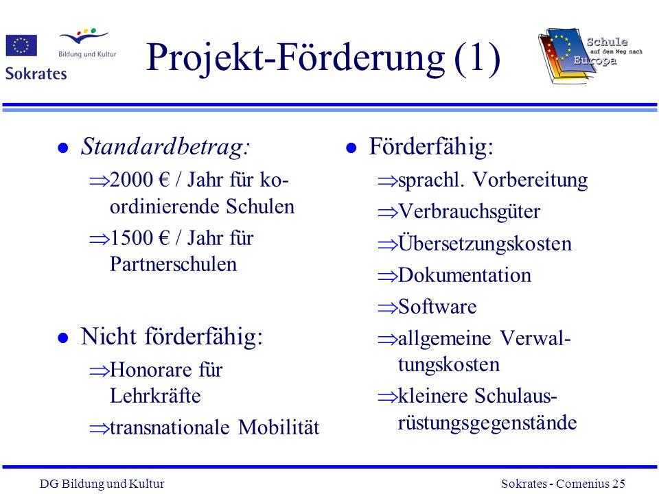 Projekt-Förderung (1) Standardbetrag: Nicht förderfähig: Förderfähig:
