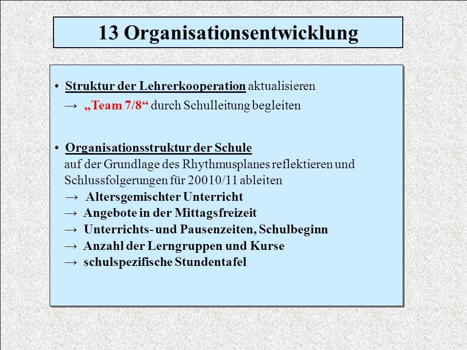 13 Organisationsentwicklung