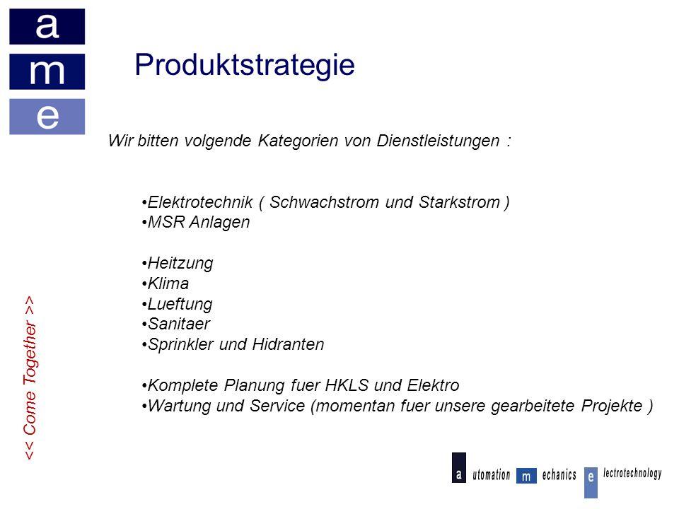 Produktstrategie Wir bitten volgende Kategorien von Dienstleistungen :