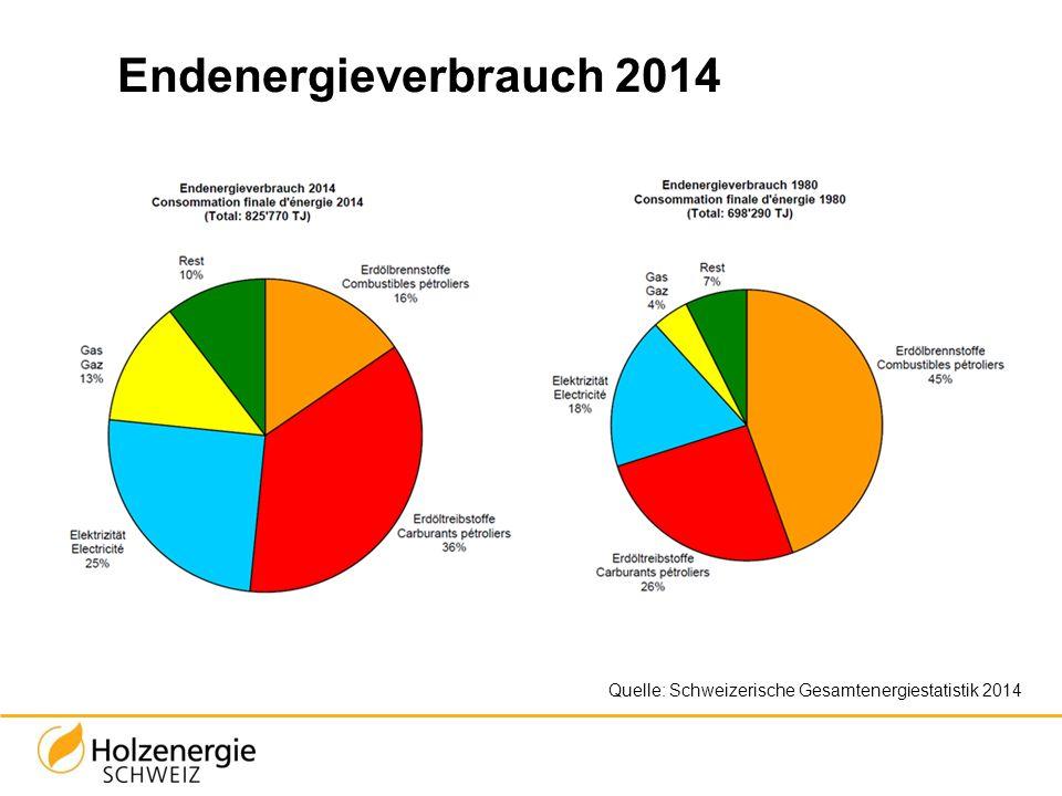 Endenergieverbrauch 2014 Elektrizität: Vorwiegend Wasserkraft (55%) und Atomkraft (40%) Rest: Holz, Biomasse, Wind, Sonne, Abfall (KVA)