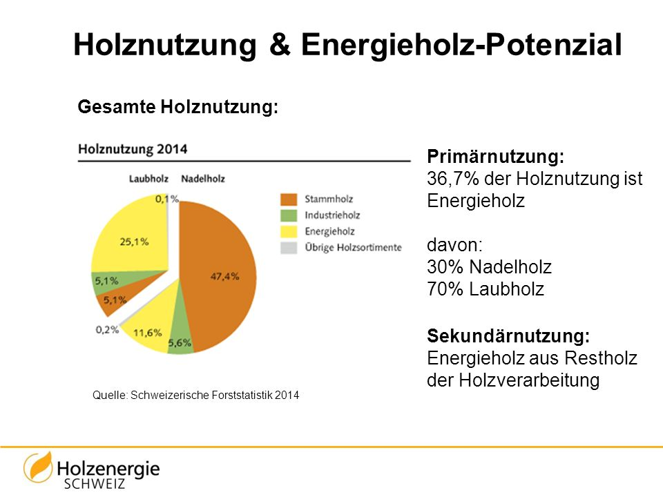 Holznutzung & Energieholz-Potenzial