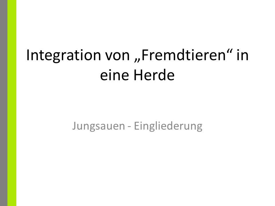 """Integration von """"Fremdtieren in eine Herde"""