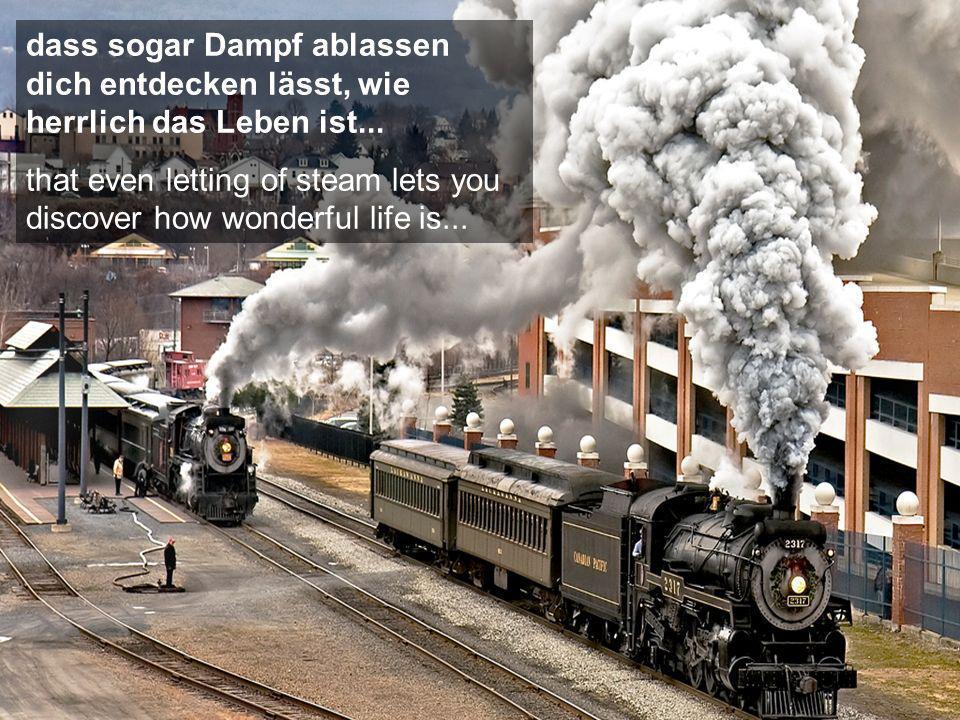 dass sogar Dampf ablassen dich entdecken lässt, wie herrlich das Leben ist...