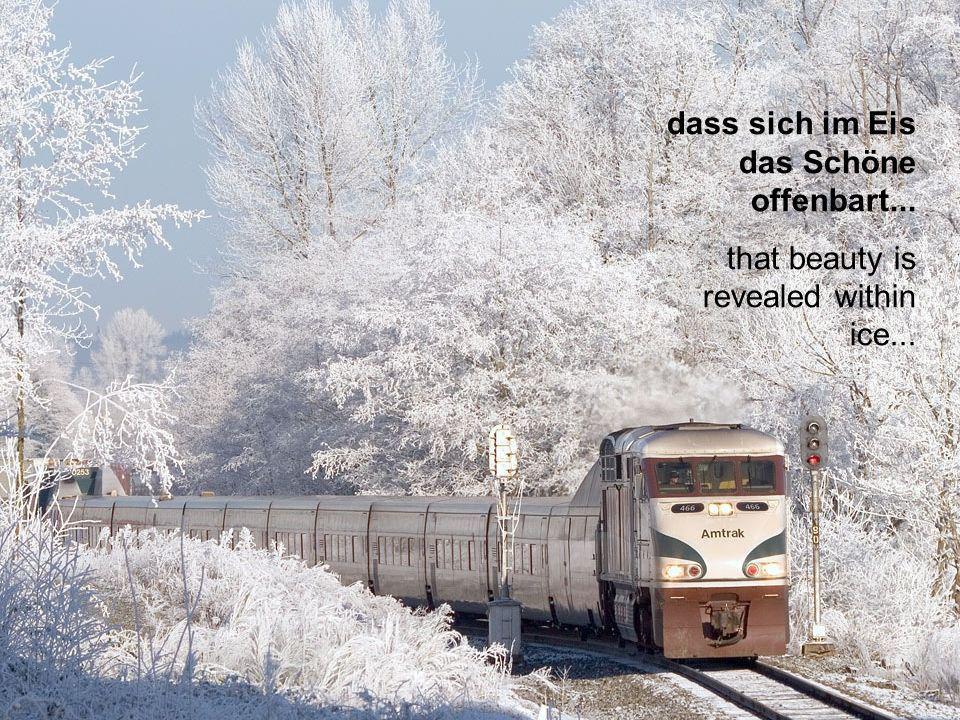 dass sich im Eis das Schöne offenbart...