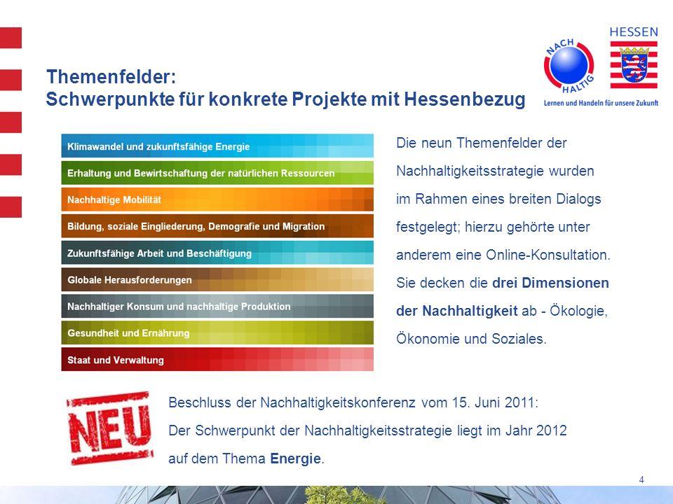 Themenfelder: Schwerpunkte für konkrete Projekte mit Hessenbezug