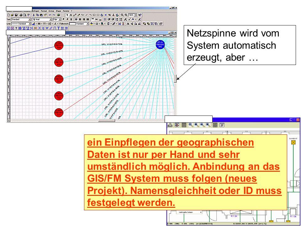 Netzspinne wird vom System automatisch erzeugt, aber …