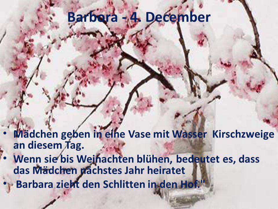 Barbora - 4. December Mädchen geben in eine Vase mit Wasser Kirschzweige an diesem Tag.