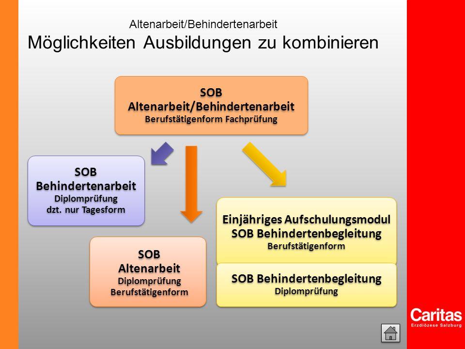 SOB Altenarbeit/Behindertenarbeit Berufstätigenform Fachprüfung