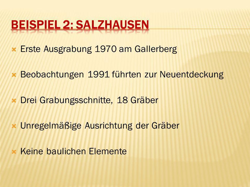 Beispiel 2: Salzhausen Erste Ausgrabung 1970 am Gallerberg