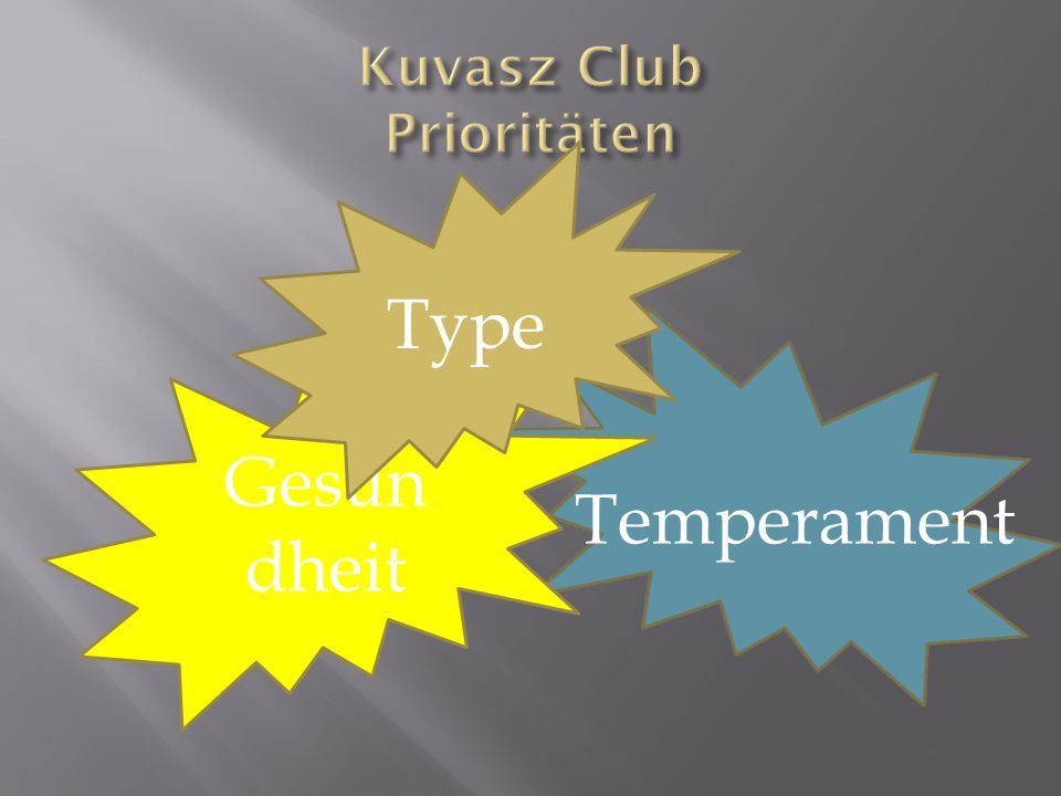Kuvasz Club Prioritäten