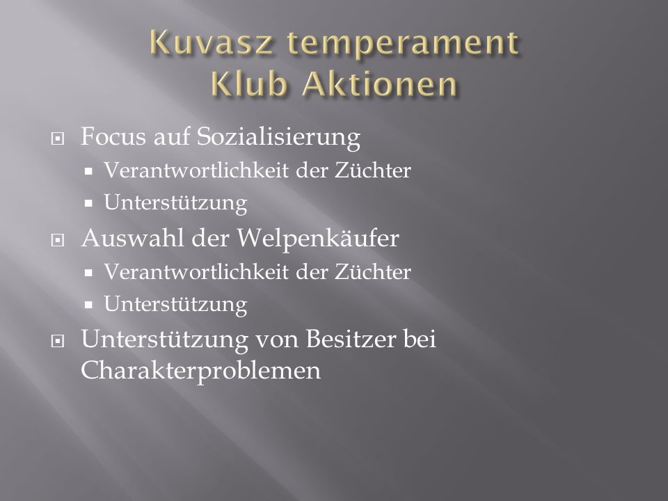 Kuvasz temperament Klub Aktionen