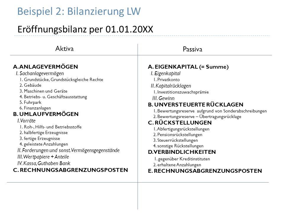 Beispiel 2: Bilanzierung LW