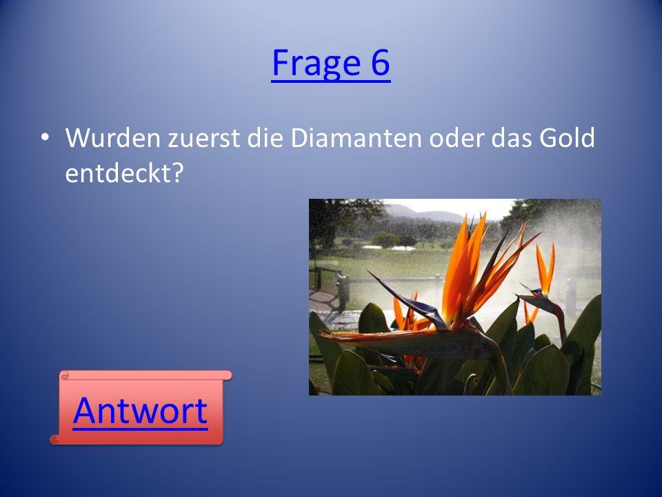 Frage 6 Wurden zuerst die Diamanten oder das Gold entdeckt Antwort