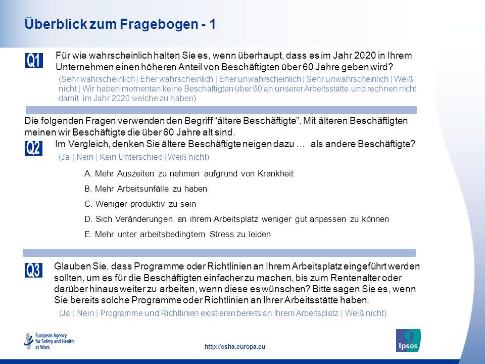 Überblick zum Fragebogen - 1
