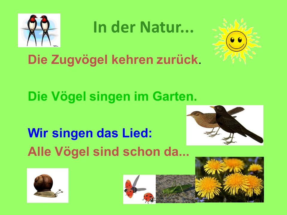 In der Natur... Die Zugvögel kehren zurück.