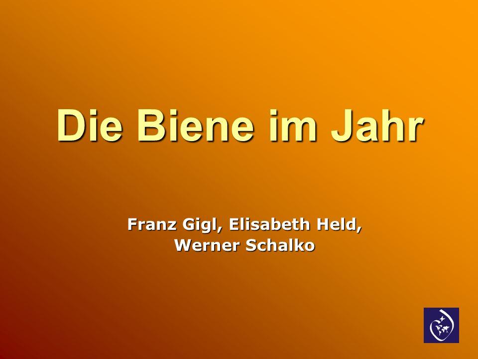 Franz Gigl, Elisabeth Held, Werner Schalko