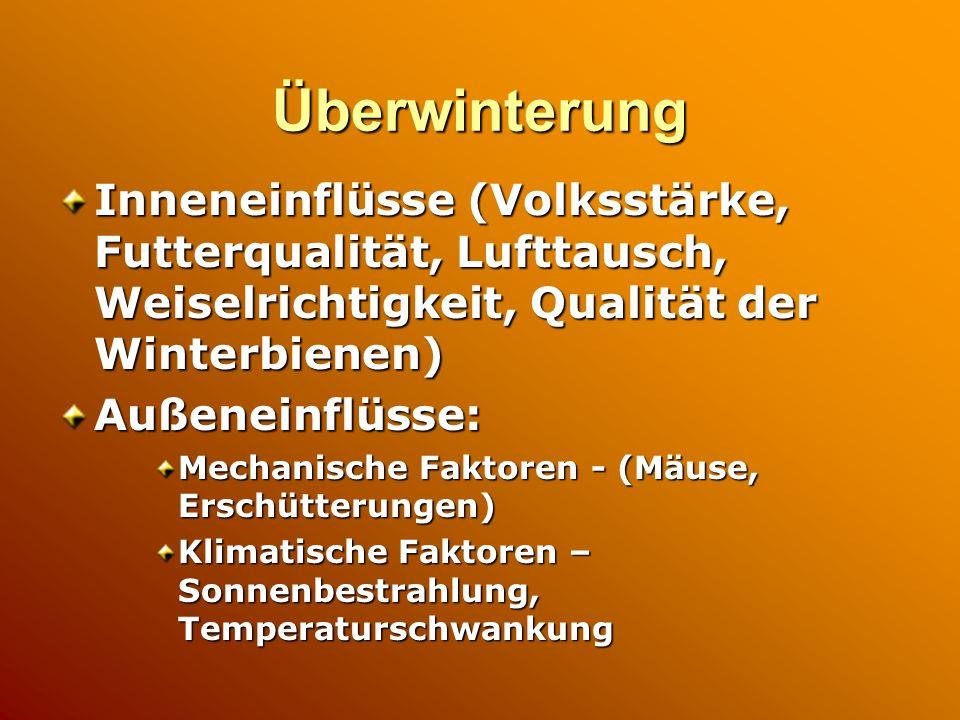 Überwinterung Inneneinflüsse (Volksstärke, Futterqualität, Lufttausch, Weiselrichtigkeit, Qualität der Winterbienen)