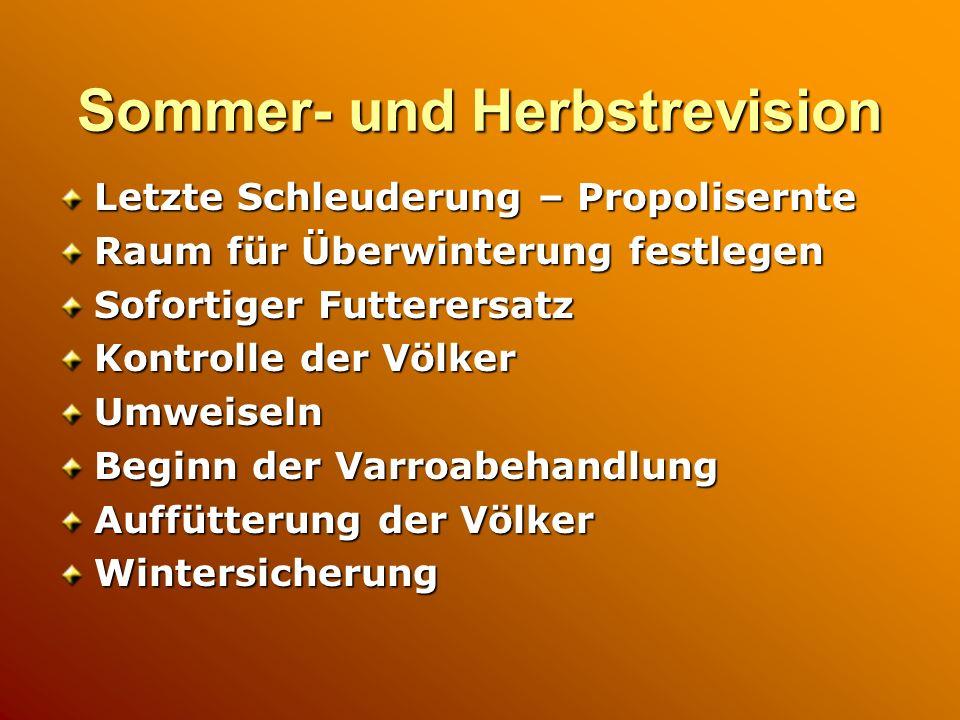 Sommer- und Herbstrevision