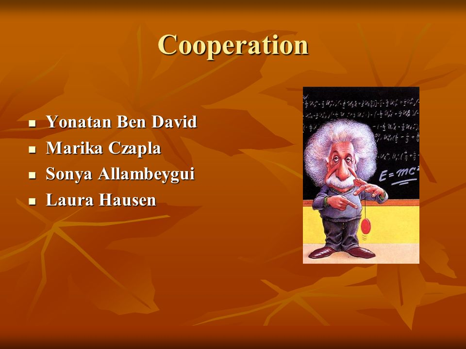 Cooperation Yonatan Ben David Marika Czapla Sonya Allambeygui