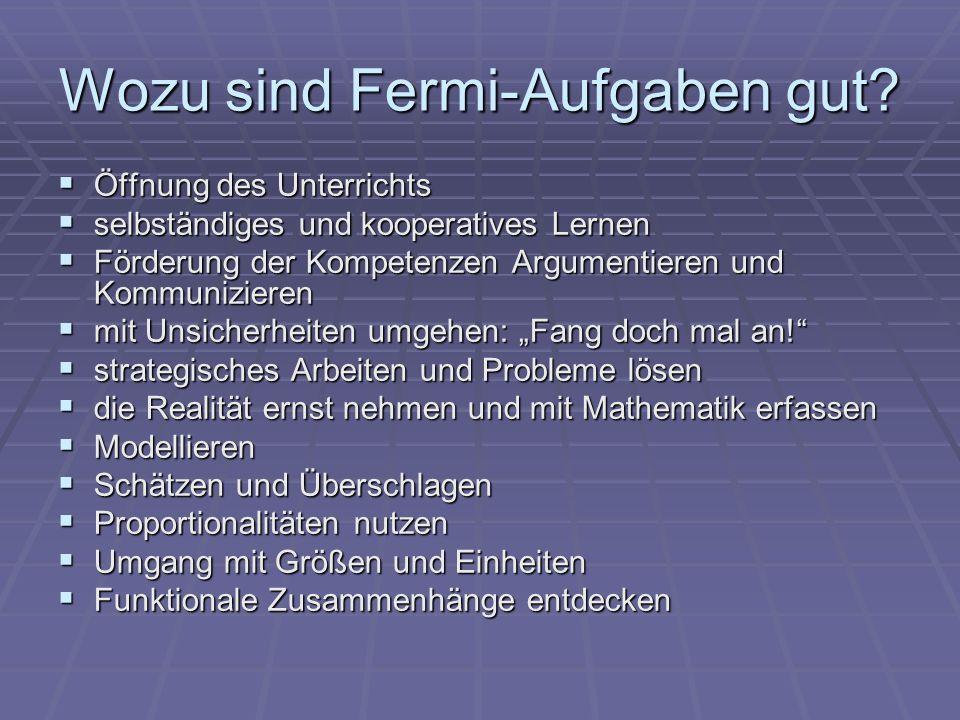 Wozu sind Fermi-Aufgaben gut
