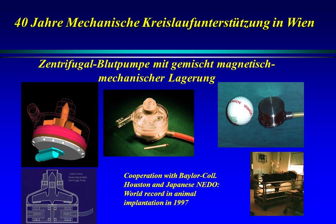 Zentrifugal-Blutpumpe mit gemischt magnetisch- mechanischer Lagerung